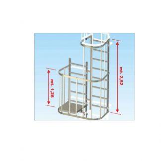 Piattaforma di ispezione per scale con gabbia